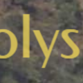 holyspa (@holyspa) Avatar