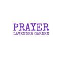 Prayer Lavender Garden (@jhonmax21794) Avatar