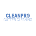 Clean Pro Gutter Cleaning Greensboro (@melissaperaz6464r) Avatar
