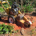 Bay Stump Grinding (@baystumpgrinding) Avatar