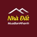 Nhà đất Đà Nẵng (@nha-dat-da-nang) Avatar