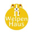 Welpenhaus (@welpenhaus) Avatar