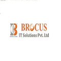 Brocus IT Solution Pvt. Ltd (@brocussolution) Avatar