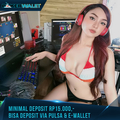 PokerWalet Situs Agen Poker Terpercaya (@pokerwalet99) Avatar