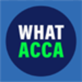 What Acca (@whatacca) Avatar