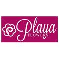Playa Del Rey Florist (@playadelreyflorist) Avatar
