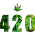 cannabisdispensary (@cannabisdispensary) Avatar