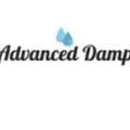Advanced Damp (@advanceddamp) Avatar