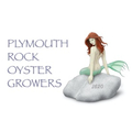 Plymouth Rock Oyster Growers (@plymouthrockoystergrowers) Avatar