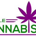 purple cannabis dc (@purplecannabisdc) Avatar