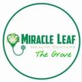 MIRACLE LEAF THE GROVE (@miracleleafthegrove) Avatar