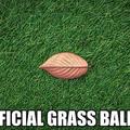 Look Like Grass (@artificialgrassbaldivis) Avatar