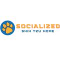 Shih Tzu Puppies (@shihtzupuppies) Avatar
