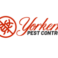 Yorkers Pest Control (@yorkerspestcontrol) Avatar