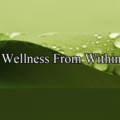 Wellness from Within (@wellnessfromwithin) Avatar