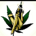Double-mint_twin2 (@mitchswife1) Avatar