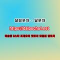 제주오피 달포차 dalpocha1、net (@fvezzangiz) Avatar