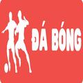 Dabong Vip tường thuật trực tiếp bóng đá (@dabongwin) Avatar