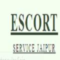 Escort Service Jaipur (@escortservice10) Avatar