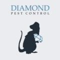 Diamond Pest Control (@diamondpestcontrol) Avatar