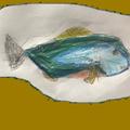 Little Falls Fishing Guides (@littlefallsfishingguides) Avatar