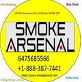 Smoke Arsenal (@glassbongssmokearsenal) Avatar