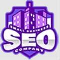 Small Business SEO Company (@smallbusinessse) Avatar