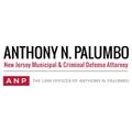 Anthony N. Palumbo (@palumborenaud) Avatar