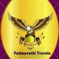 Padmavathi Travels (@balajidarshantravels) Avatar