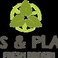 Pots & Plants (@potsplants) Avatar