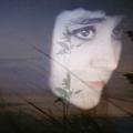 Sophie Thouvenin (@prismes) Avatar