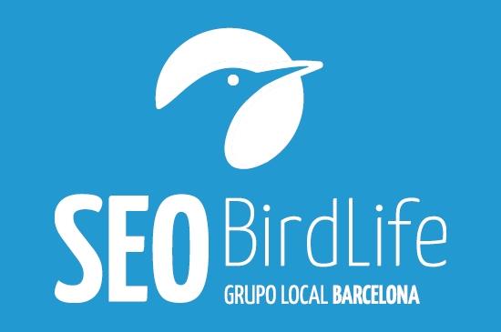 Grupo Local SEO Barcelona (@glseobarcelona) Cover Image