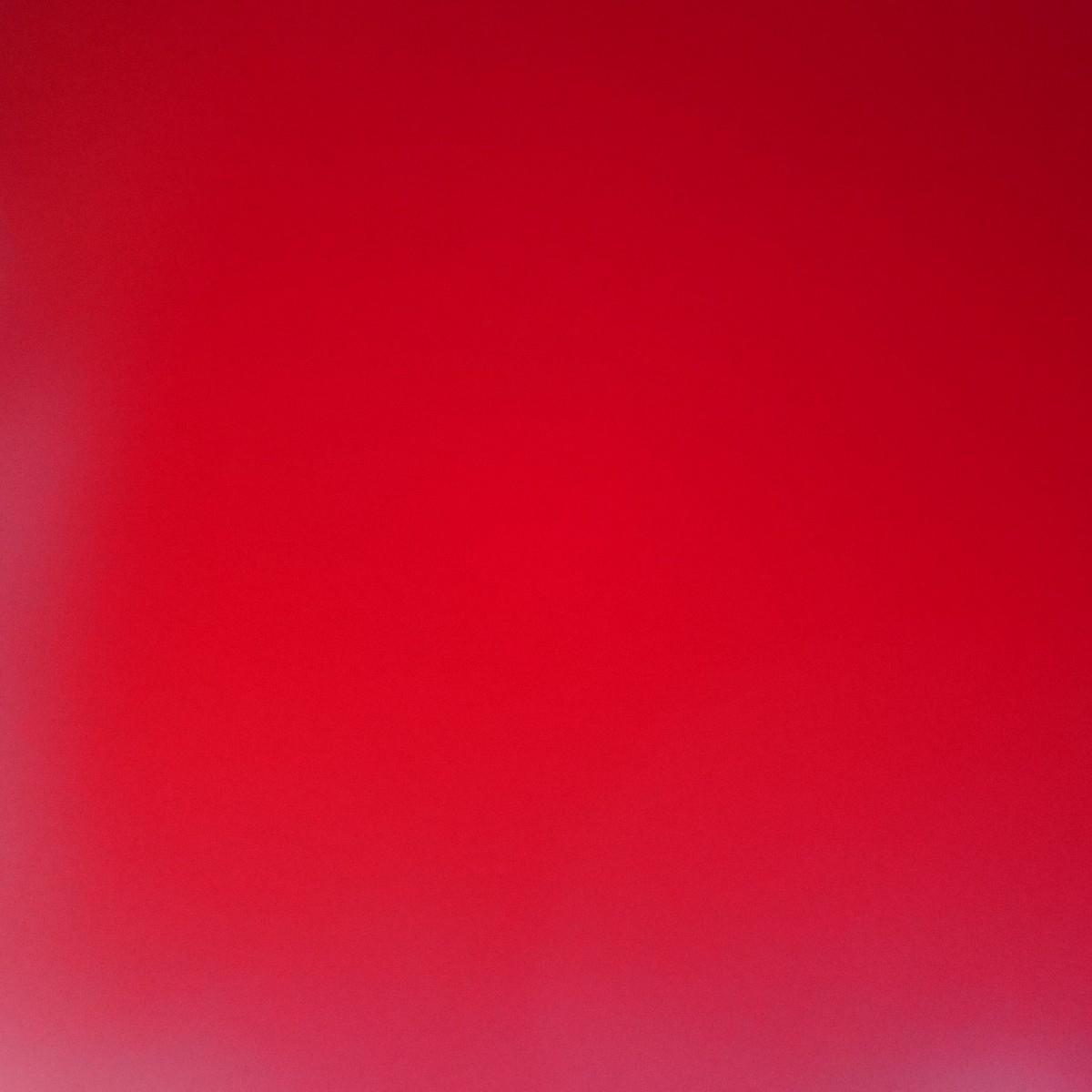 (@ron_seekatze) Cover Image