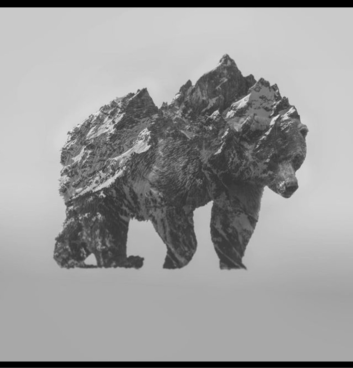 @bearmode Cover Image
