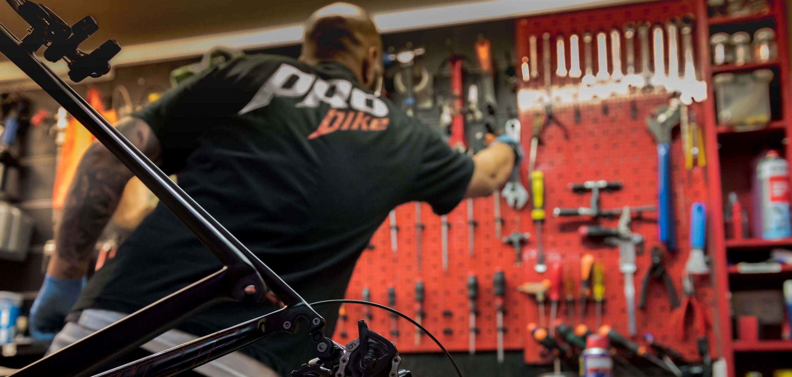 Pro Bike Roma (@probike) Cover Image