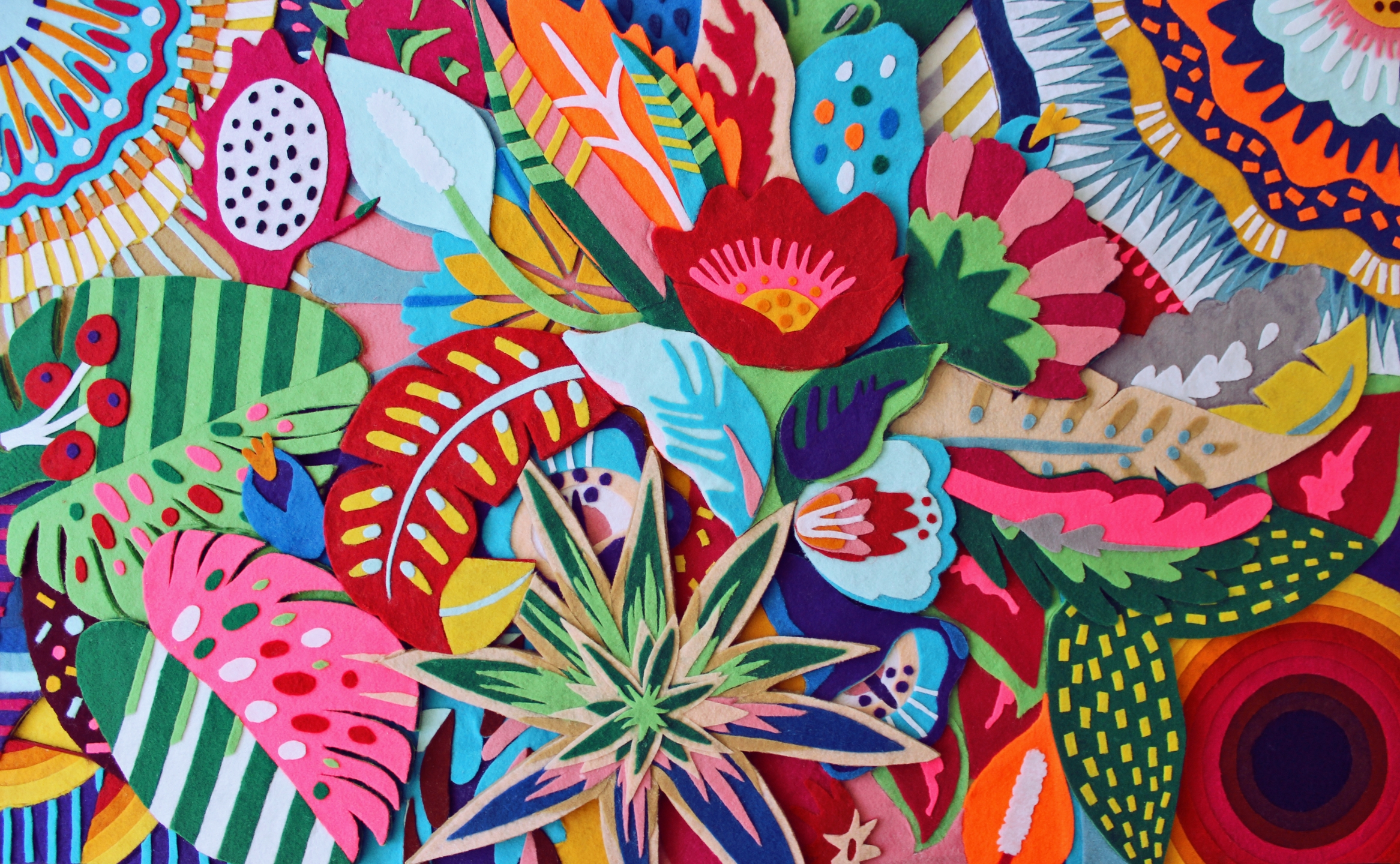 Naíma Almeida (@naimaalmeida) Cover Image