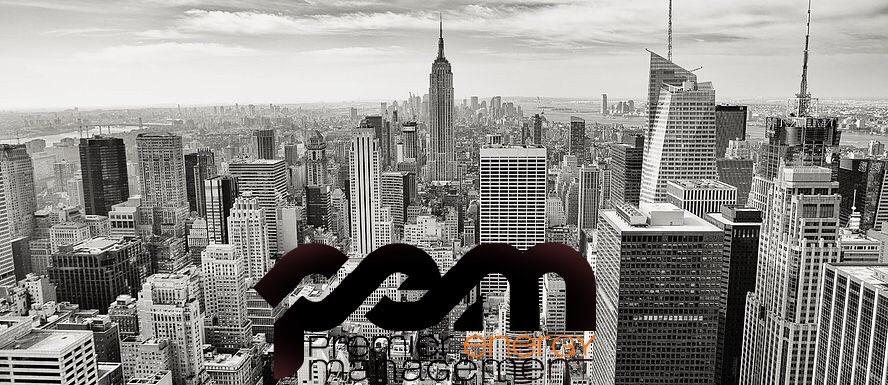 Premier Energy Management LLC  (@tonyz3) Cover Image