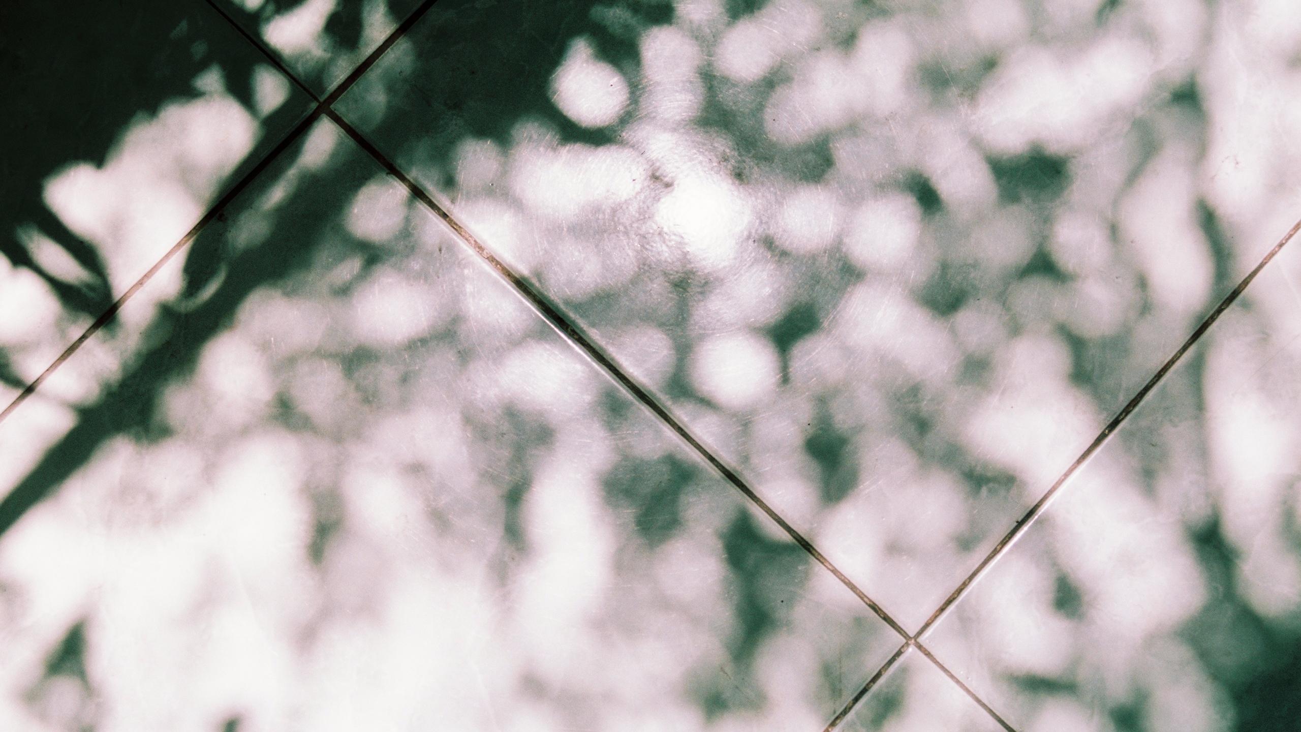 Paro Nguyen (@paronguyen) Cover Image