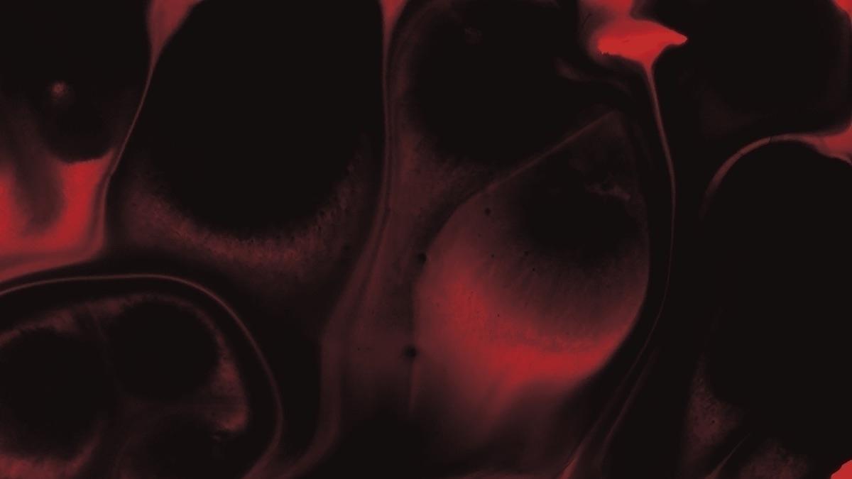 Rachel (@rachelrogov) Cover Image