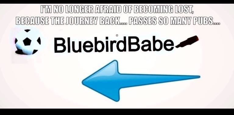 Bluebirds Babe (@bluebirdbabe) Cover Image