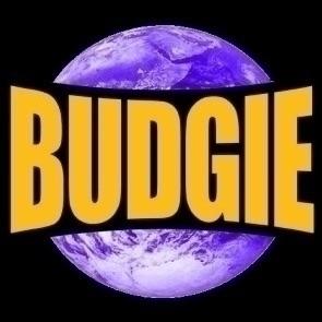 """Lee """"budgie"""" Barnett (@budgie) Cover Image"""