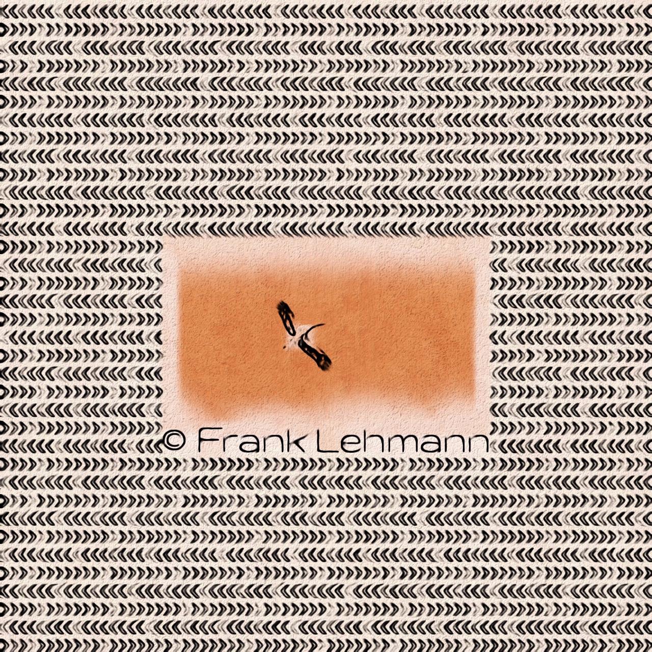 Frank Lehmann (@franklehmann) Cover Image