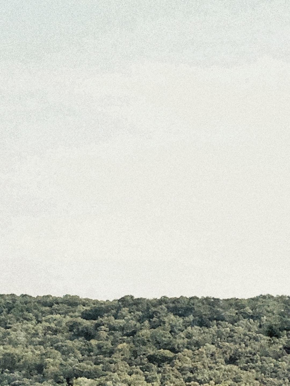 Vincent K (@vkub) Cover Image