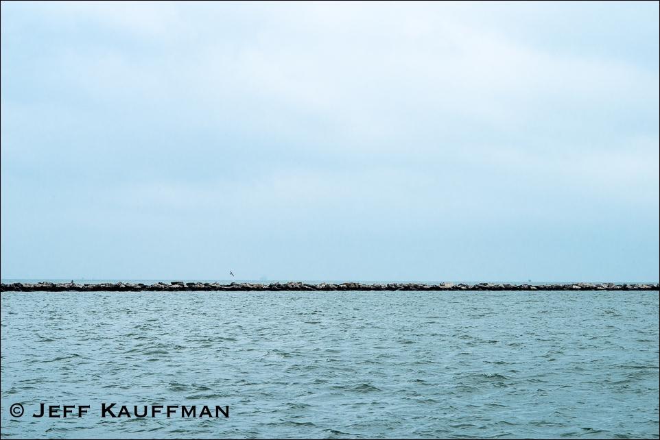 Jeff Kauffman Photography (@jeffkphoto) Cover Image