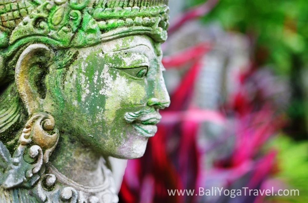 Bali Wellness Retreat & Bali Yoga Travel (@baliwellnessretreat) Cover Image