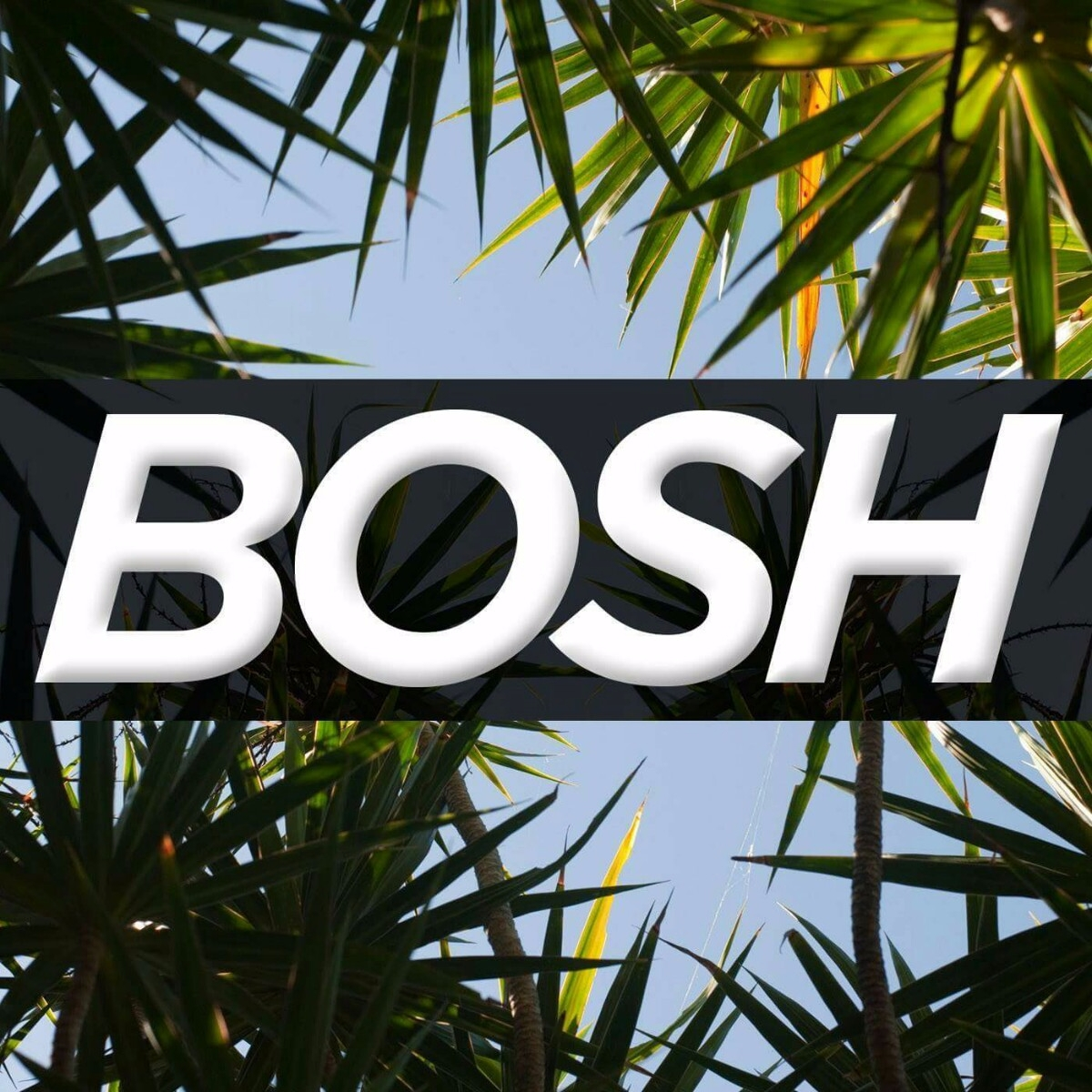 "Josh ""Bosh"" Alder (@djbosh) Cover Image"