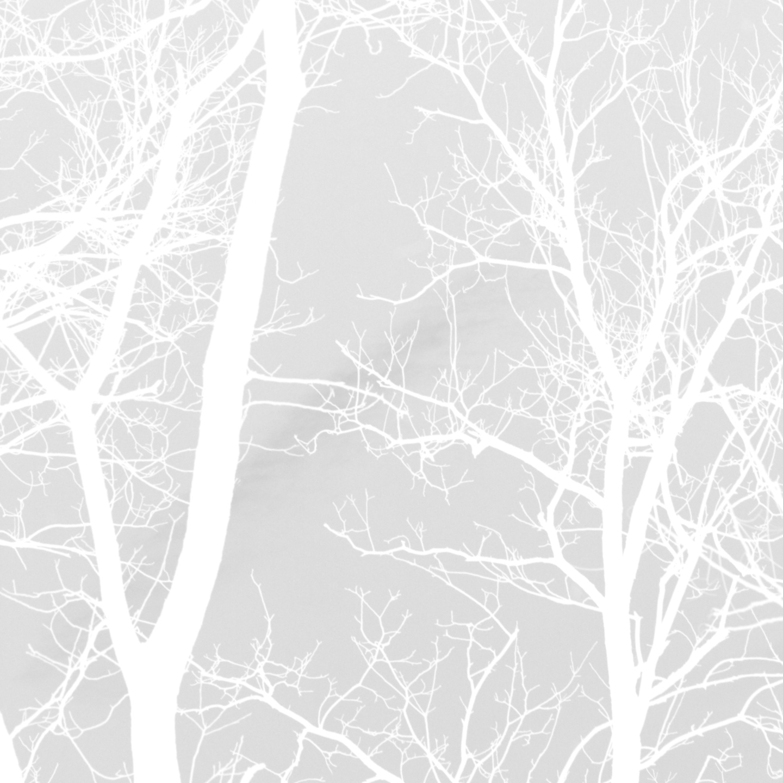 The Silence Kit (@thesilencekit) Cover Image