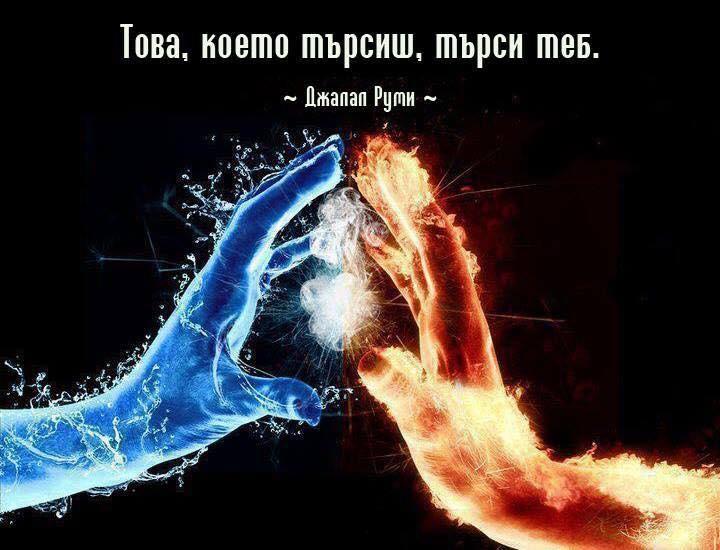 Desislav (@xsite) Cover Image