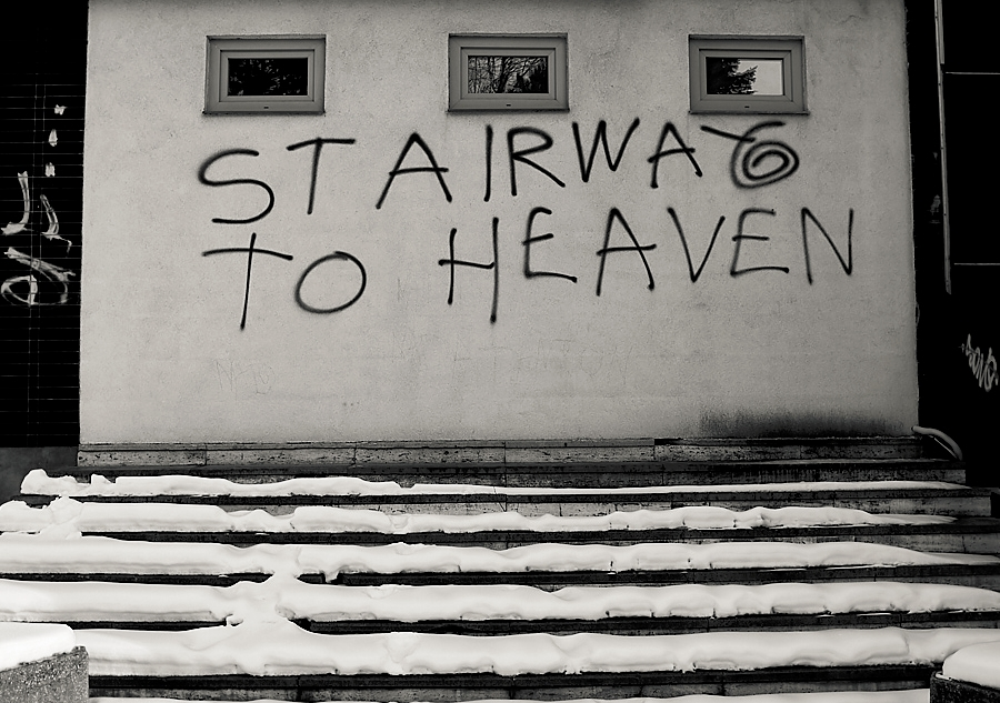 David Tatarciak (@david_tatarciak) Cover Image