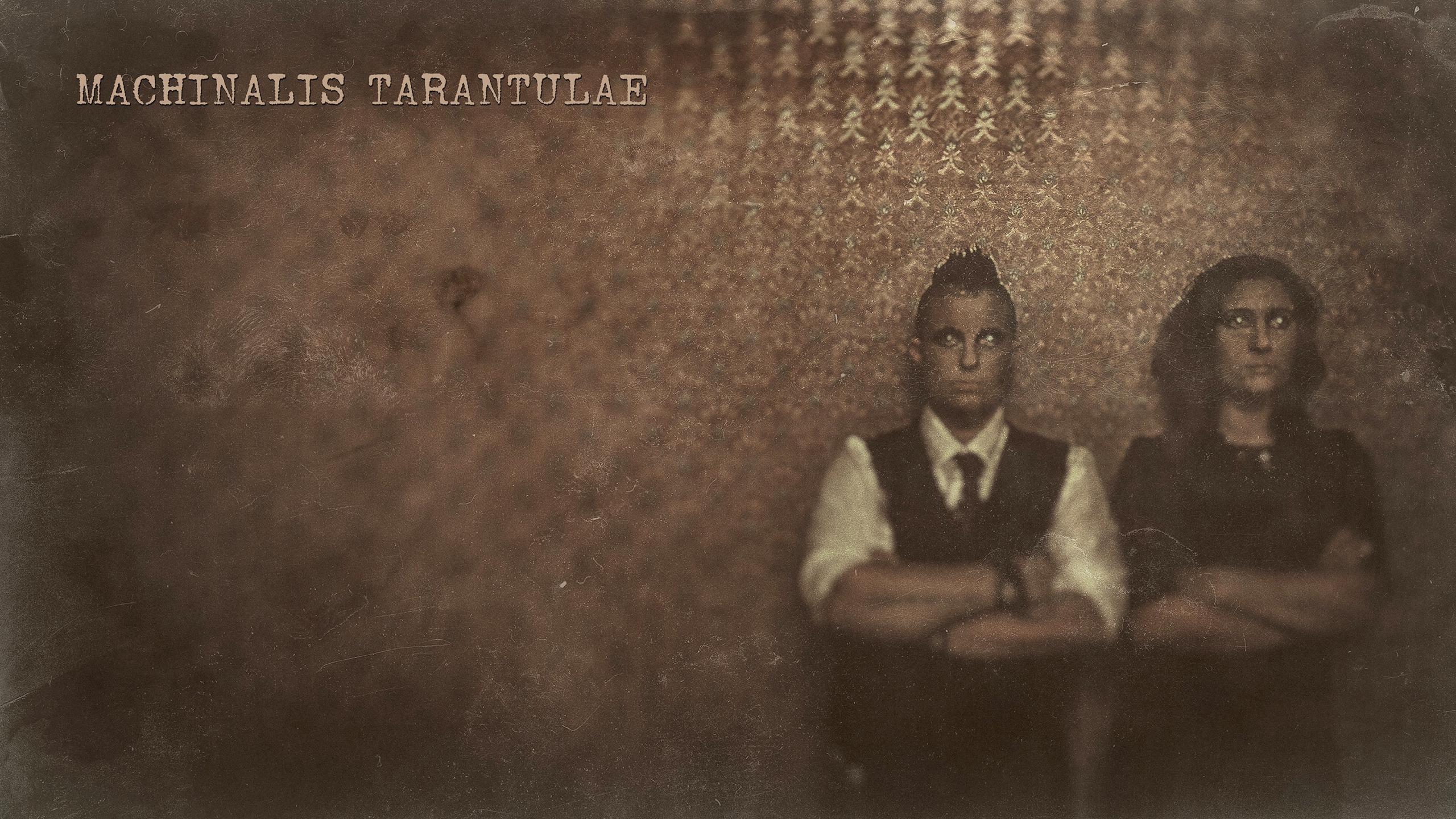 Machinalis Tarantulae (@machinalis-tarantulae) Cover Image